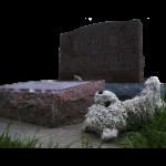 entierros-300×300.png